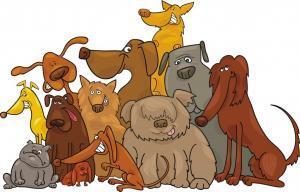 Barking News cartoon pack of dogs
