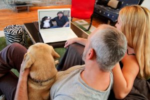 Skype dog training